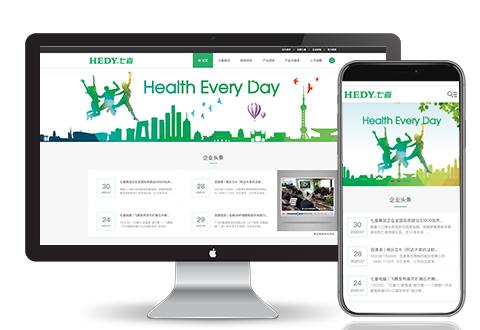七喜集团网站建设项目
